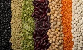 legumes of mineral and uses